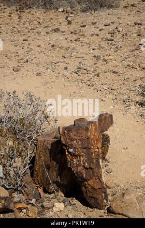 damaraland landscape in namibia - Stock Photo
