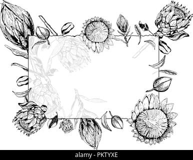 King Protea Flowers Buds And Leaves Items Composed In Circle Shape
