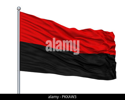 Congress Of Ukrainian Nationalism Flag On Flagpole, Isolated On White Background, 3D Rendering - Stock Photo