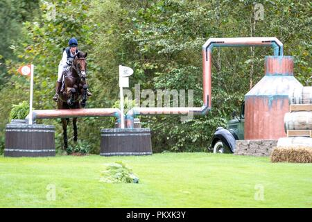 North Carolina, USA. 15th Sept 2018. Lauren Kieffer. Vermiculus. USA. Eventing Cross country Day 5. World Equestrian Games. WEG 2018 Tryon. North Carolina. USA. 15/09/2018. Credit: Sport In Pictures/Alamy Live News - Stock Photo