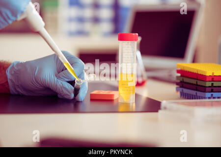 A scientist in a medical laboratory with a dispenser in his hands is doing an genetic analysis samples - Stock Photo