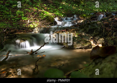 A little cascade in the Carpathian Mountains - slow motion - Stock Photo