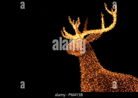 Illuminated LED String Gold Giant Reindeer of Outdoor Christmas Decoration Against Night Sky - Stock Photo