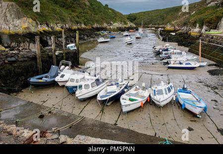 Porth Clais harbour, St David's, Pembrokeshire, Wales - Stock Photo