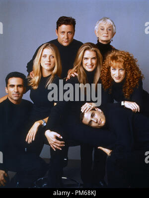 Film Still from 'Suddenly Susan' David Strickland, Brooke Shields, Nestor Carbonell, Andrea Bendewald, Judd Nelson, Barbara Barrie, Kathy Griffin 1996   File Reference # 31042217THA  For Editorial Use Only - All Rights Reserved - Stock Photo