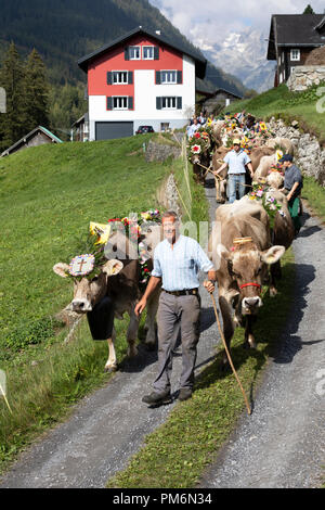 Wassen, Switzerland, September 15 2018: Ceremonial driving down of cattle from the mountain pastures Susten into the valley of Wassen in Canton Uri in - Stock Photo