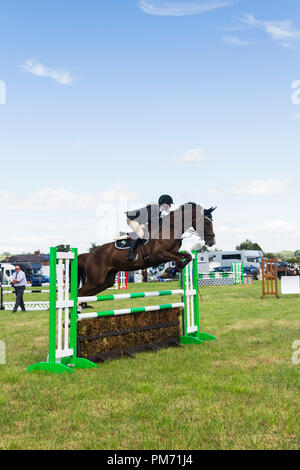 Horse and rider in a show jumping competition at at the Arthington show, West Yorkshire in 2017. - Stock Photo