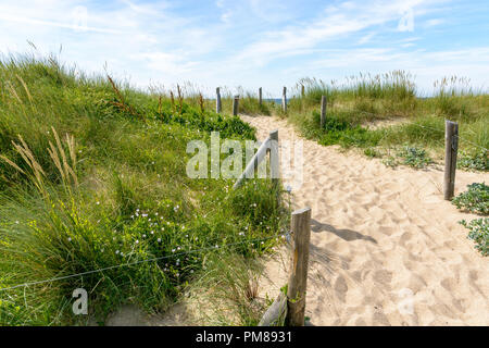 A pathway with footprints, delimited by a wire fence on the sand dune covered with wild grasses, behind the du Guesclin beach on the Breton seashore. - Stock Photo