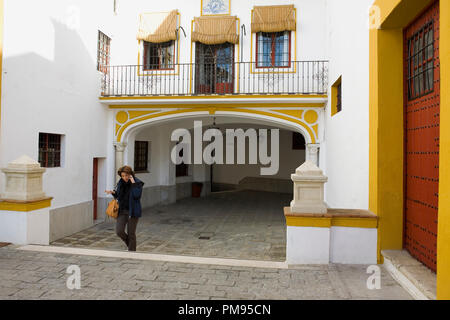 Lane outside the Plaza de toros de la Real Maestranza de Caballería de Sevilla‎, Andalusia, Spain - Stock Photo