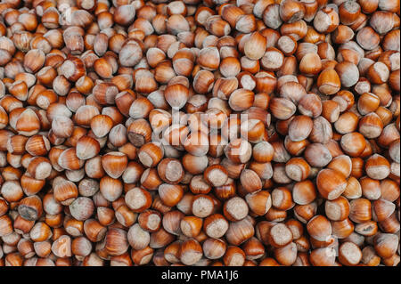 Hazelnuts. Food background, photo wallpaper. - Stock Photo