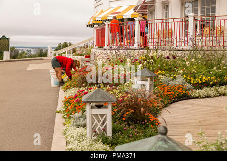 Female gardener bent over tending to the gardens in front of the Grand Hotel on Mackinac island, Michigan. - Stock Photo