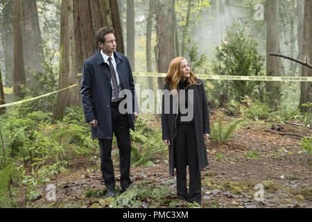 THE X-FILES:  L-R:  David Duchovny and Gillian Anderson in the 'Kitten' episode of THE X-FILES on Fox. © 2018 Fox Broadcasting Co.  Cr:  Eric Millner/Fox - Stock Photo