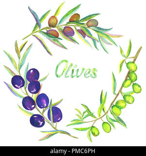 Black, Gold or blonde and Green Olive branches with fruits, set, isolated hand painted watercolor illustration - Stock Photo