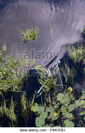 Shopping trolley discarded among  plants in the River Stour, Blandford, Dorset, England, UK - Stock Photo