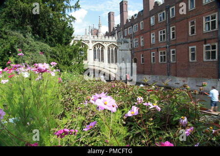bridge of sighs, university of Cambridge