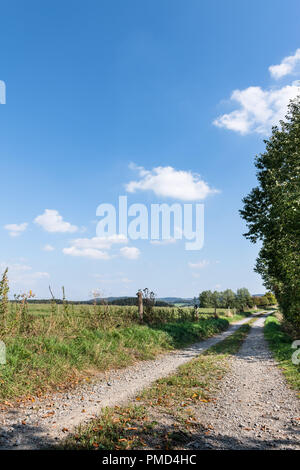 A track across the fields in summer with blue sky. - Stock Photo