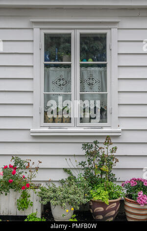 Pretty Norwegian cottage with flowers on  Øvre Strandgate in the old part of Stavanger known as Gamle Stavanger. - Stock Photo