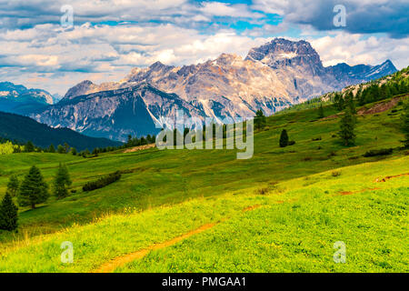 View of the Dolomites mountain with the hill of flowers field at the Falzarego Pass in Province of Belluno Italy - Stock Photo