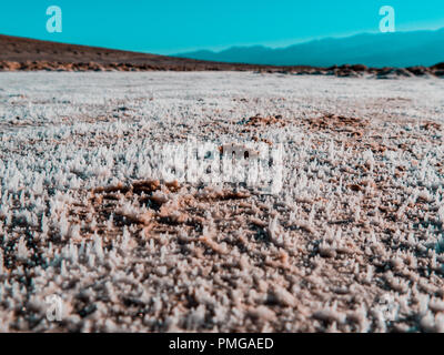 Salt is heaping up from the soil on a sunny day in the hart of dead valley - Stock Photo