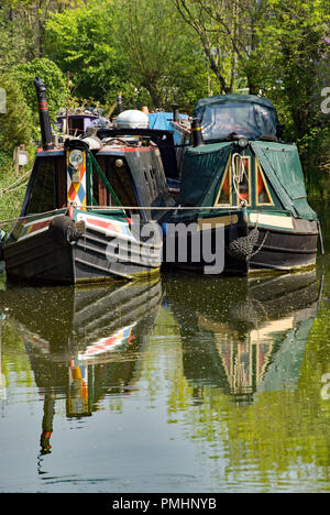 Sawbridgeworth, Hertfordshire/England - May 8th 2018:Narrow boats double moored at the Sawbridgeworth moorings on the River Stort - Stock Photo