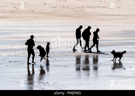 A family and their dogs seen in silhouette as they walk on Fistral Beach in Newquay in Cornwall. - Stock Photo