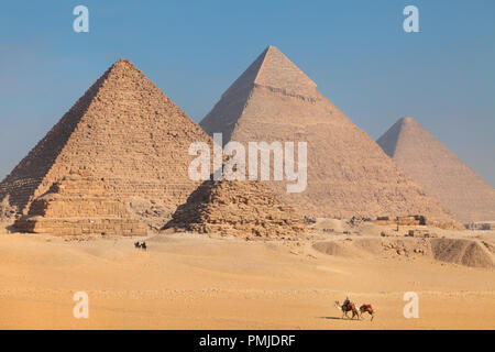 Camels walks through the desert sand on Giza Plateau near the Great Pyramids of Egypt - Stock Photo