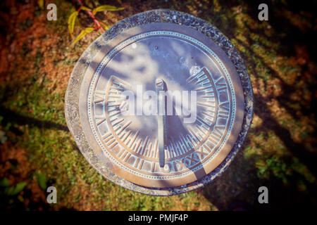 Overhead view of a garden sundial - John Gollop - Stock Photo