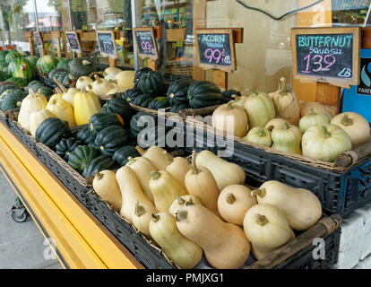 Varieties of squash for sale outside a grocery store on Main Street in Vancouver, BC, Canada - Stock Photo
