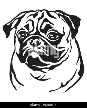 Decorative portrait of dog Pug, vector isolated illustration in black color on white background - Stock Photo