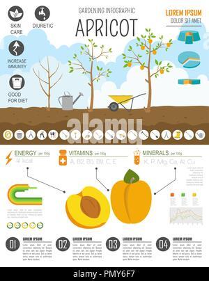 Gardening Work Farming Infographic Peach Graphic Template Flat