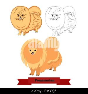 Pomeranian dog isolated on white background. Ginger pomeranian spitz dog in hand drawn and flat styles. - Stock Photo
