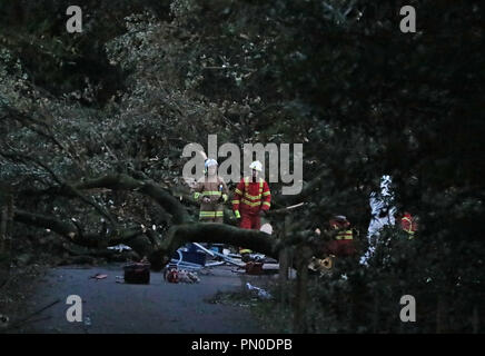 Emergency services and a forensic officer at Slieve Gullion forest park in Co Armagh, where a contractor working for Northern Ireland Water died after he was hit by a falling tree as Storm Ali wreaked havoc across Ireland. - Stock Photo