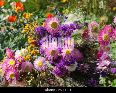 Bunch of Dried Flowers in flower garden - Stock Photo