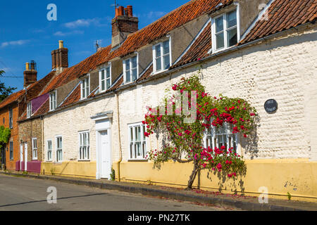 A rose growing on the front of a row of cottages. - Stock Photo