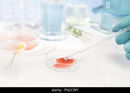 Close-up on meat cultured in laboratory conditions - Stock Photo