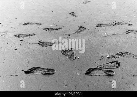 baby footprints footprint on the wet sand of the ocean - Stock Photo