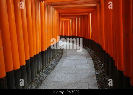 Path between red torii gates, Fushimi Inari shrine, Kyoto, Japan. No PR
