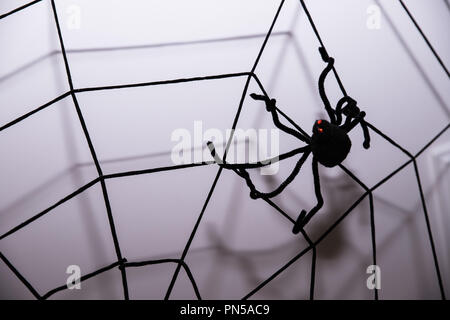 Home decor against wall background.Halloween holiday concept.Halloween background with spider web and spiders as symbols of Halloween on the dark blue wooden background. Halloween concept - Stock Photo