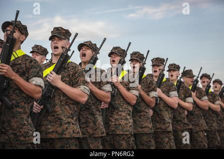 Parris Island, South Carolina, USA. 19th Sep, 2018. Recruits with India Company, 3rd Recruit Training Battalion, prepare and practice for their initial drill evaluation on Peatross Parade Deck Sept. 14, 2018 on Parris Island, S.C. The Initial Drill Evaluation tests each platoon's ability to listen to the orders of its drill instructor, and is a demonstration of the unit's degree of discipline and esprit de corps. (U.S. Marine Corps photo by Sgt. Dana Beesley) US Marines via globallookpress.com Credit: Us Marines/Russian Look/ZUMA Wire/Alamy Live News - Stock Photo