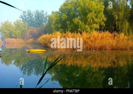 September 20, 2018 - Beijin, Beijin, China - Beijing, CHINA-Autumn scenery of Beijing Olympic Forest Park in Beijing, China. (Credit Image: © SIPA Asia via ZUMA Wire) - Stock Photo