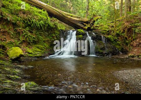 Rustic Falls on Orcas Island in the San Juan Islands, Washington state - Stock Photo