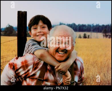 Prod DB © Omni Zoetrope / DR L'ETALON NOIR (THE BLACK STALLION) de Carroll Ballard 1979 USA avec Kelly Reno et Mickey Rooney d'apres le roman de Walter Farley - Stock Photo