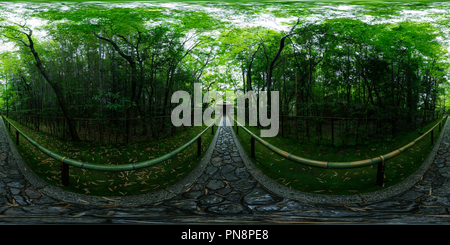 The fresh green of Koto-in temple at Kyoto, Japan 01 - Stock Photo