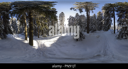 Puijo winter forest in Kuopio - Stock Photo
