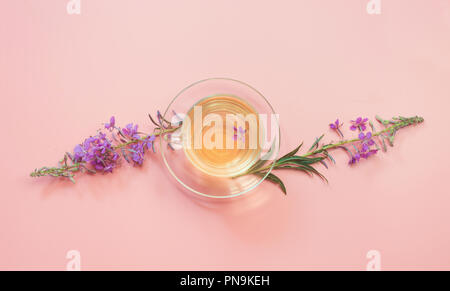 Blooming Sally flowers and cup of herbs tea on pink. Top view and concept. Copy space. - Stock Photo