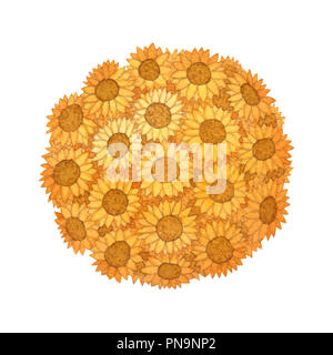 Sunflower Ball Watercolor isolated on White Background. Illustration. - Stock Photo