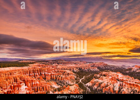 Bryce Canyon National Park, Utah, USA at dawn. - Stock Photo