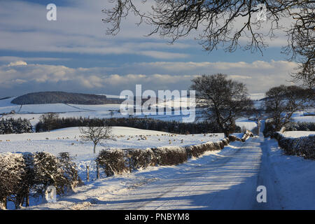 Snowy landscape Wandon, Northumberland - Stock Photo