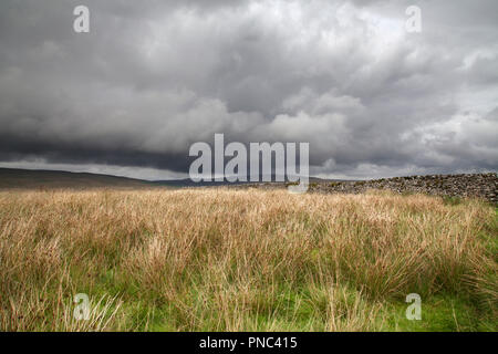 Dramatic Sky and Dry Stone Wall, Ribblesdale, Three Peaks, North Yorkshire Dales National Park - Stock Photo