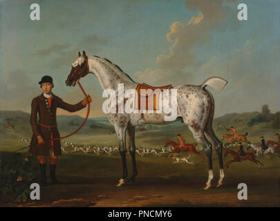 Scipio, a spotted hunter, the property of Colonel Roche. Date/Period: Ca. 1750. Painting. Oil on canvas. Height: 991 mm (39.01 in); Width: 1,340 mm (52.75 in). Author: Thomas Spencer. - Stock Photo